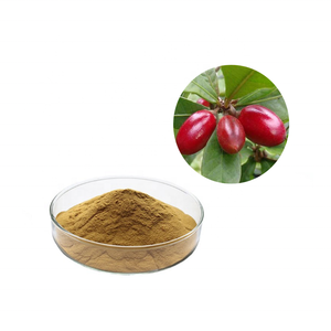 Factory price Miracle Fruit/berry miracle fruit powder miracle fruit tablets