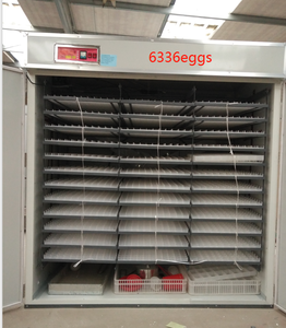 5280 eggs incubator machine price automatic