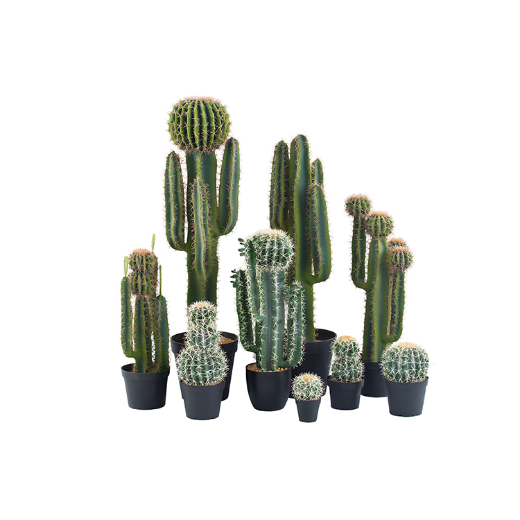 High quality custom decorative large size fake cactus artificial cactus plants