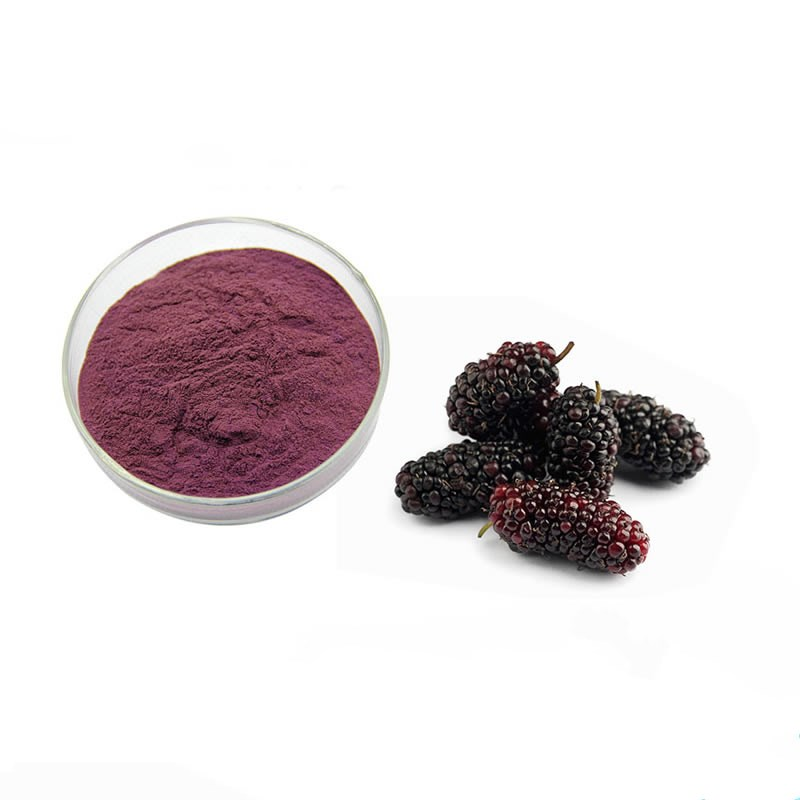 Factory supply 100% natural high quality mulberry fruit powder