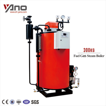 Vertical 300kg Steam Boiler Gas Rice Boiler For Rice Husk Power ...