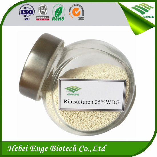 Maize Herbicide Weedicide Rimsulfuron 25%&75%WDG China supplier