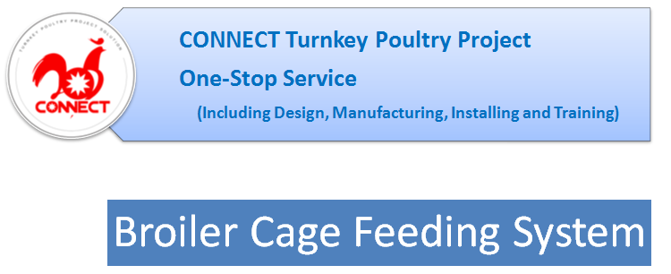 Broiler Cage Feed System.png