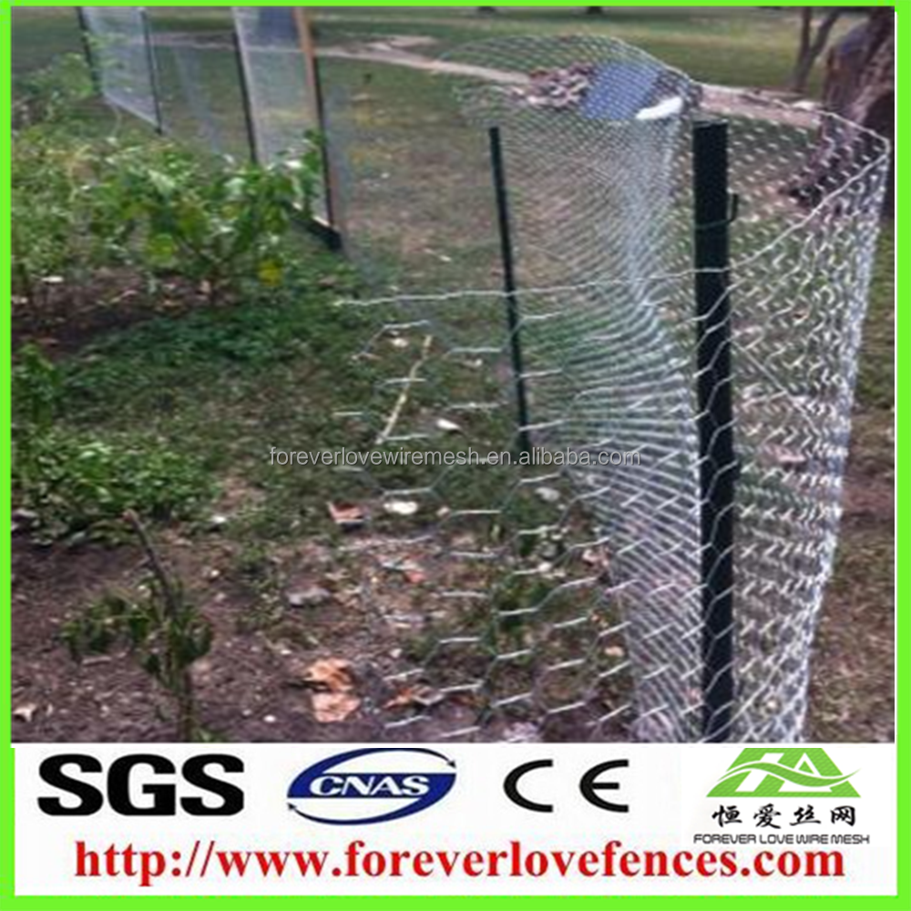 China Garden Fence Wire Netting, China Garden Fence Wire Netting ...