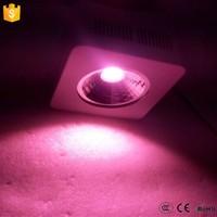 Buy Shenzhen vanq led manufacturer ,200watt cob led full spectrum ...