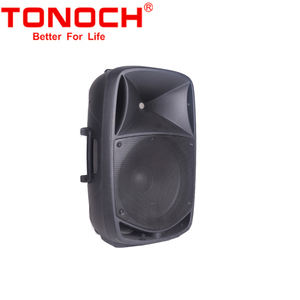 Chinese Manufacturer Big Power Portable PA High Class 15 Inch Speakers