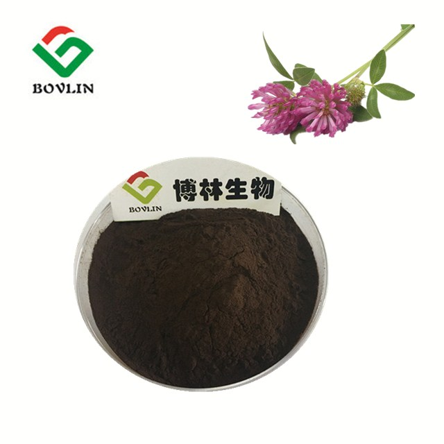 Bolin Supply Red Clover Flower Extract 40% Isoflavones