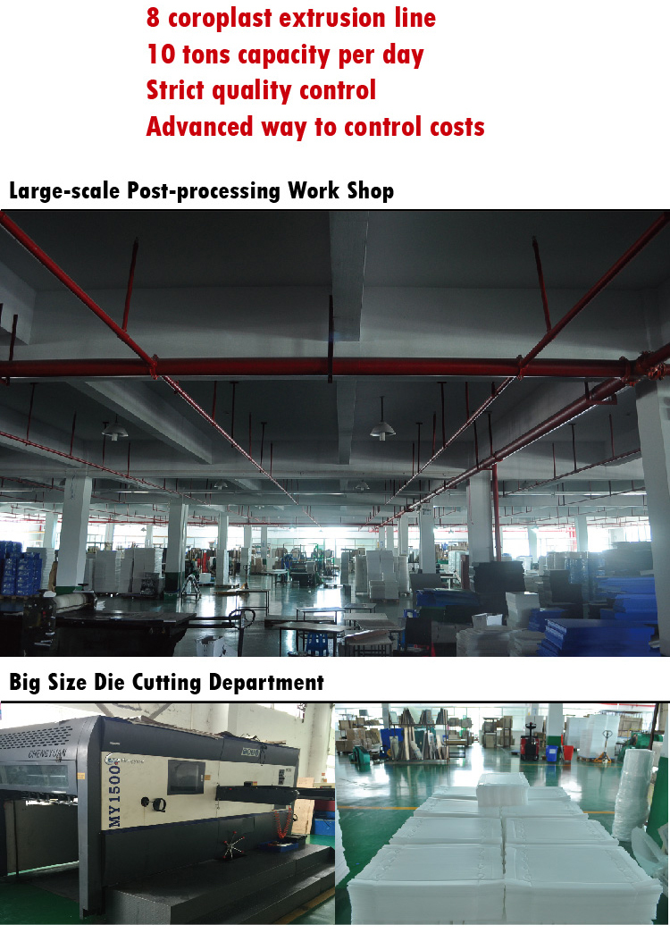 China Pp Corflute Separators / Dividers / Partitions / Box ...