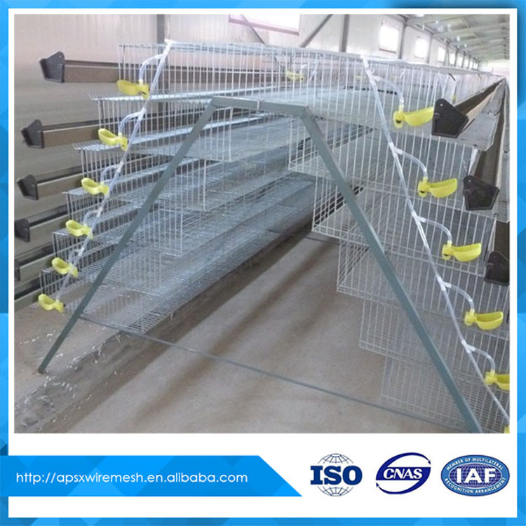 Cheap layer quail bird breeding cages for sale buy bird for Cheap c c cages