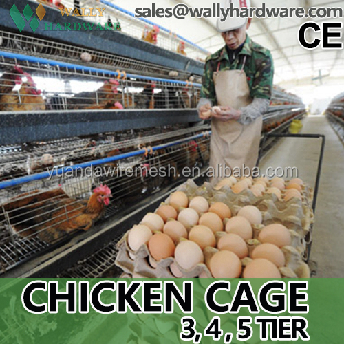 HDG Customized A type Laying Egg Chicken Cages