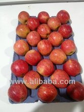 Apple (Fresh Fruits) - Pomme (Fruits frais) - Manzana (Frutas frescas) - Apfel (Frische Fruechte)