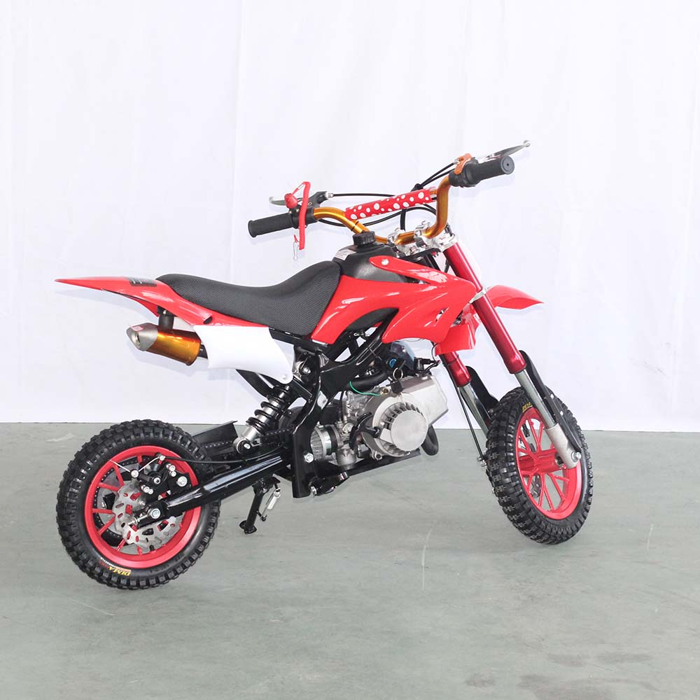 49cc trustworthy china supplier petrol motor dirt bike