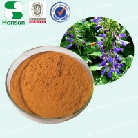 Radix salviae Miltiorrhizae Extract/Salvia Extract Powder from 15 Years hisotry's Manufacturer