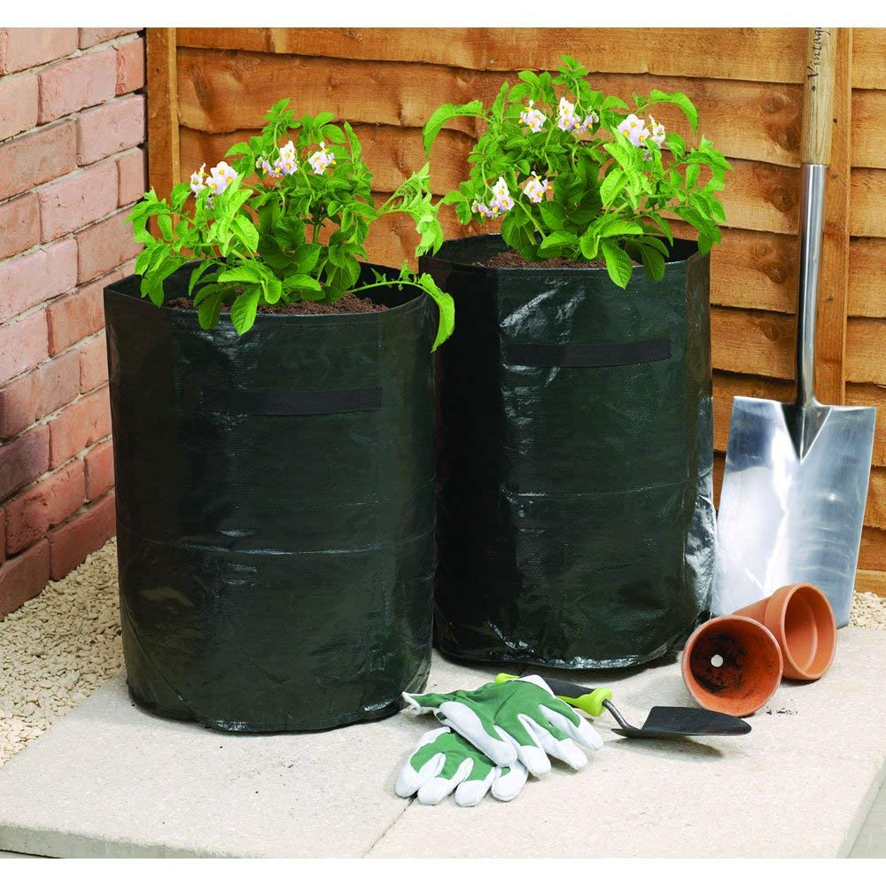 Ebristar Potato Grow Bags with Flap 10 Gallon, Indoor & Outdoor Vegetable Plant Grow Bags with Handles for Harvest Rising Tomato, Carrot, Taro and Onions (2 Pack)