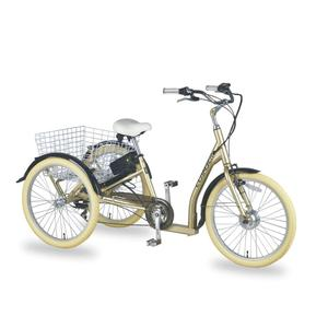C-GW7019E Customized made direct factory price adult electric tricycle