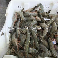 high quality frozen shrimp seafood recipes
