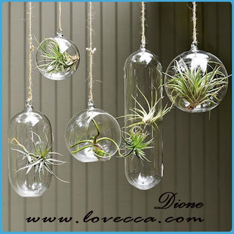 Verre suspendus terrarium jardin int rieur boule de verre rond billes de verre pour la vente - Boule verre suspendu ...