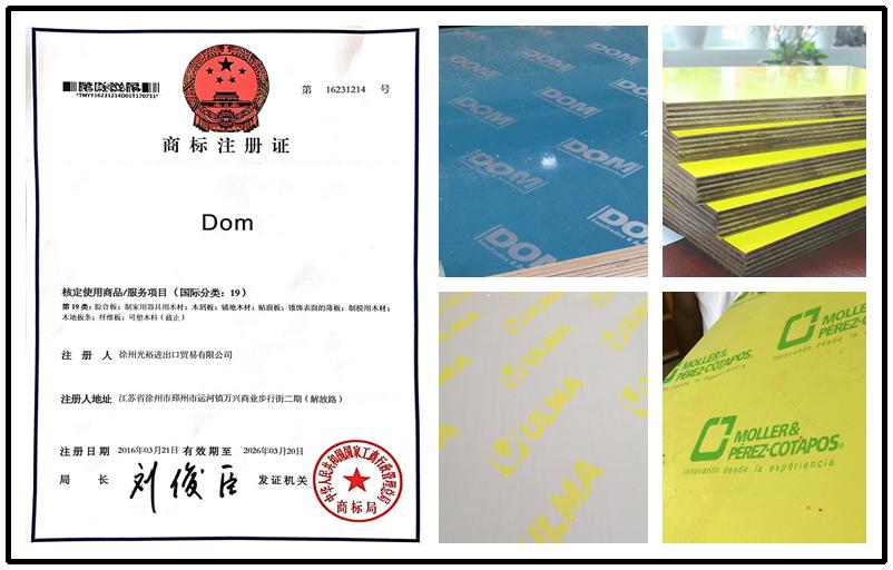 DOM Plastic Shuttering Formwork Plywood