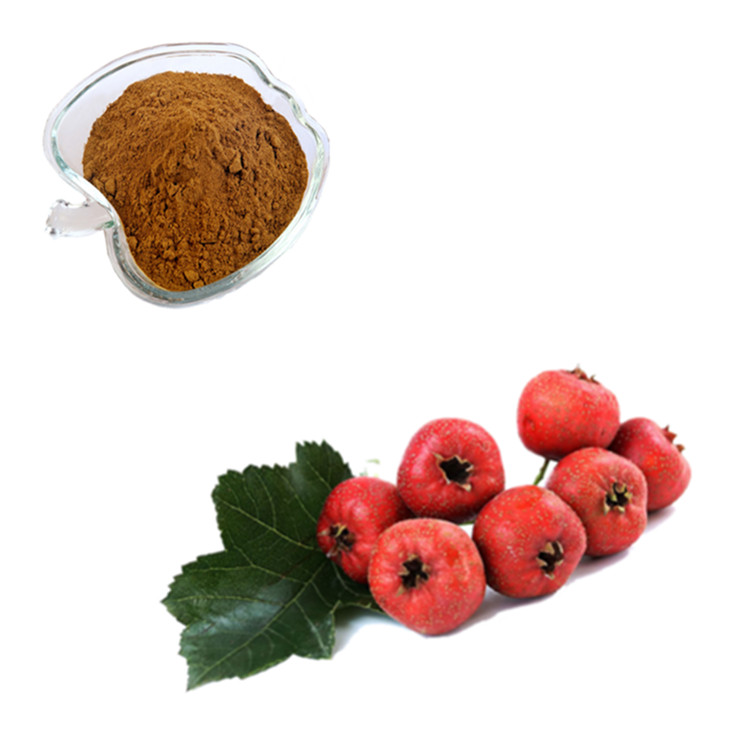 100% Pure Natural Antibacterial and Anti-Cancer Hawthorn Berry Extract 4 1