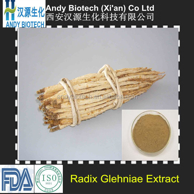 One hundred percent good quality CoasiaI Glehnia Root Extract