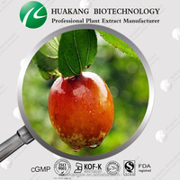 Factory Supply Natural Spine Date Seed Extract Ziziphus jujuba Mill. var. powder natural powder Spine Date Seed Extract