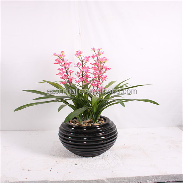 indoor small plants. gallery of succulent with indoor small plants Artificial Indoor Flowers