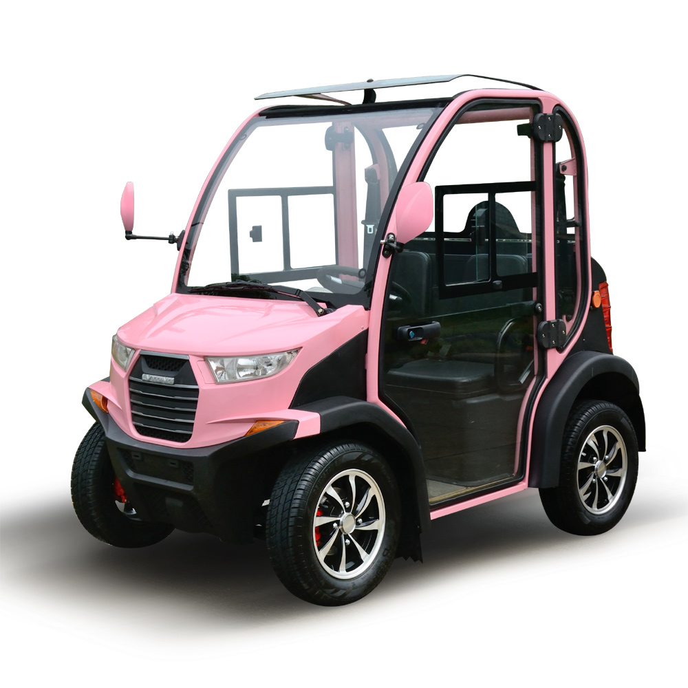 Electric Small Car Adults Price Electric Passenger Car For Sale