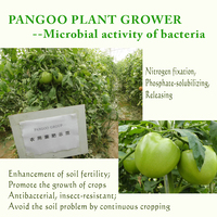 new benefit bacteria for various crops, vegetables, fruits, Chinese herbs, flowers, trees