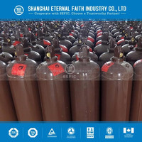 2016 Made In China High Pressure Acetylene Gas Cylinders Capacity With CE Certification