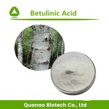 biological activities of betulin and betulinic acid 2 g a tolstikov et al among these triterpenoids, betulic acid is of special interest due to its significant biological activity exhibited both by the acid itself and.