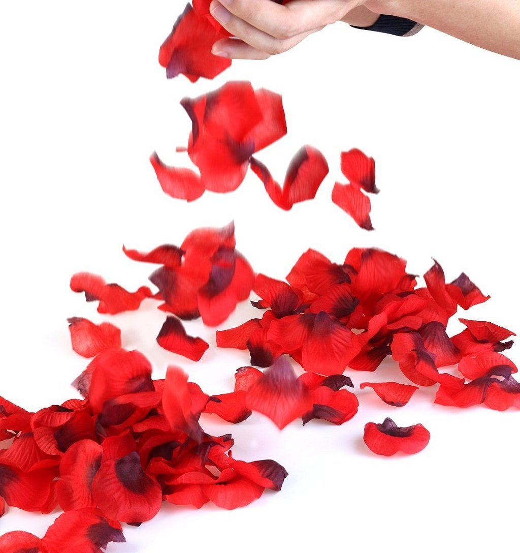 Creative Love Valentine's Day Party Wedding Design,Highpot 1000PCS Multicolor Artificial Simulation Rose Petals Home Decor (Red)