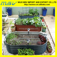 Good Container Vegetable Garden Ideas