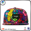 Hot Sale Make Design Printing Snapback Hat
