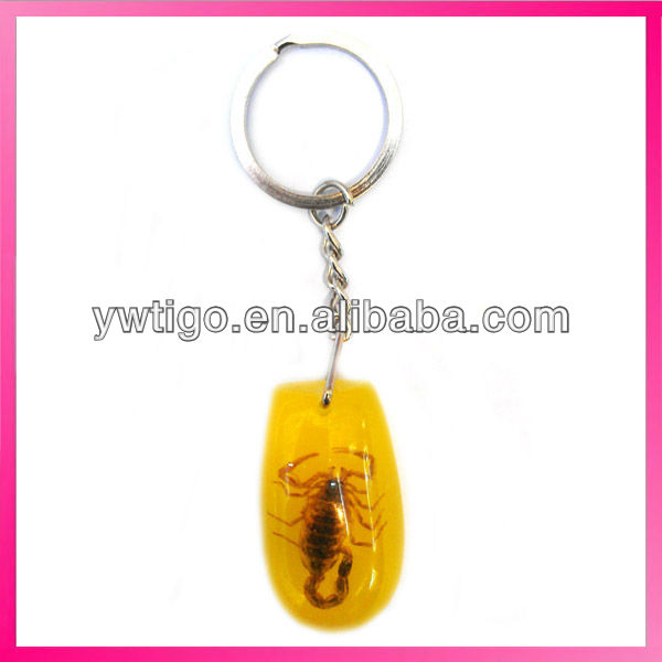 Handmade real scorpion key chain for gift