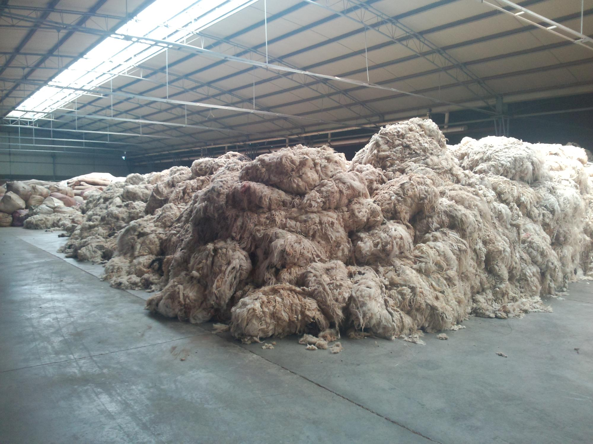 Good Natural Scoured Sheep Wool Use For Carpet - Buy Good Natural  Wool,Scoured Sheep Wool,Sheep Wool Use For Carpet Product on Alibaba com