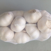 fresh chinese new crop 3p pure white garlic nature ginger and garlic