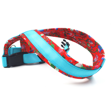 dog leash for bike belton pet adoption