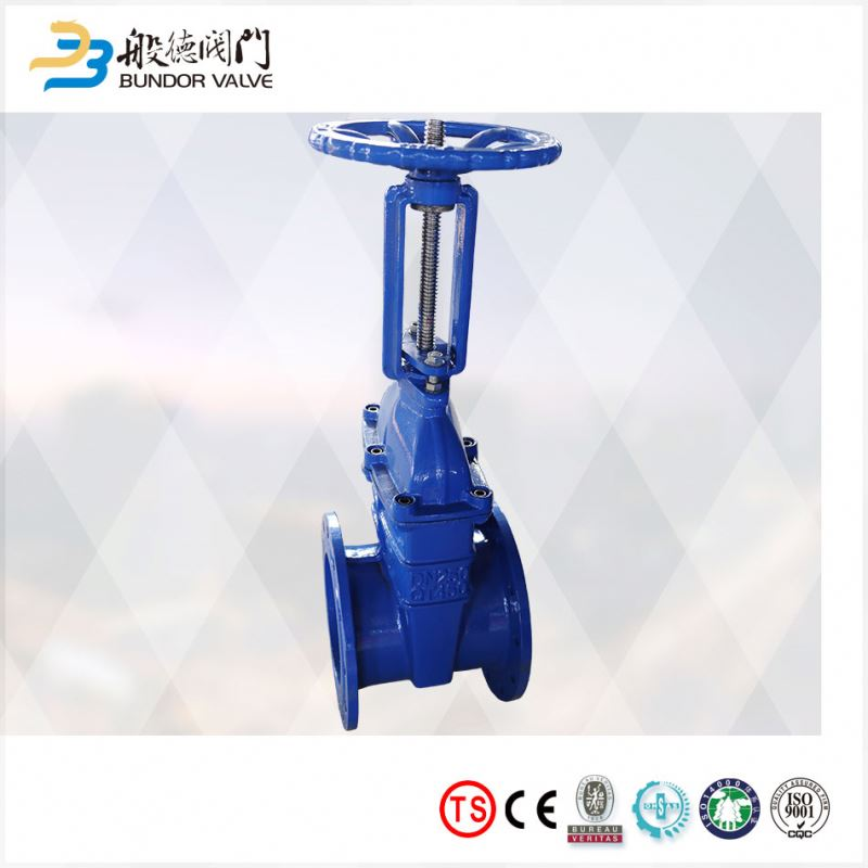 DIN standard rising stem gg25 ggg40 cast iron stem gate valve