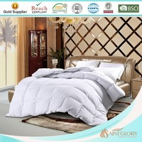 popular down quilts home duvets best sellling king comforter