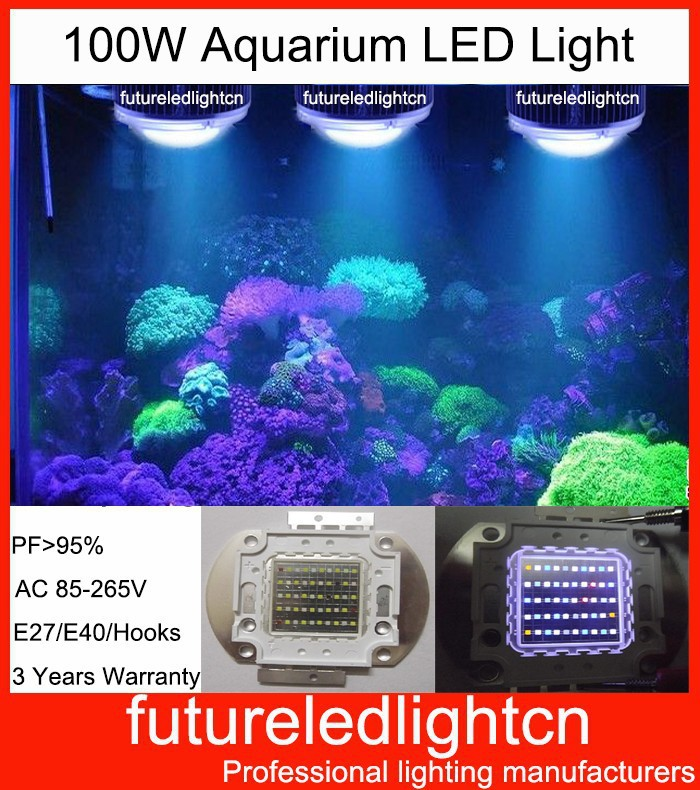Solarmax 20 T5 Aquarium Tank Strip Light Fixture 120: Online Buy Wholesale Live Coral From China Live Coral