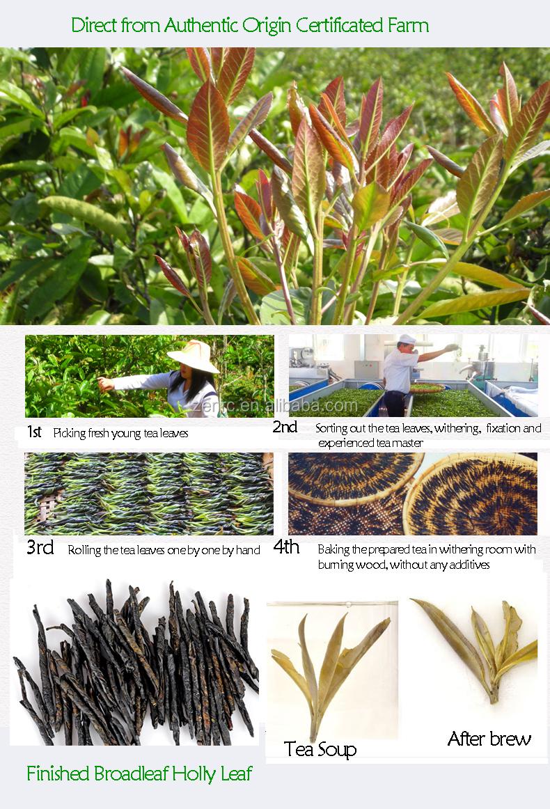 China Famous Organic Slimming Herbal Tea Kuding Cha Bitter Tea - 4uTea | 4uTea.com