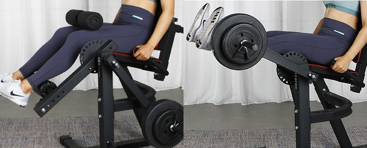 Body-Solid Series Leg Extension and Curl Machine