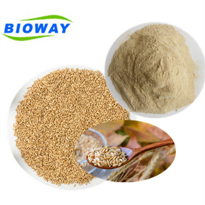 High quality 2018 best selling Factory supply EU NOP Certified Organic brown rice protein <strong>powder</strong>