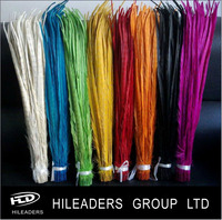 RT3236 Wholesale Dyed Ringneck Pheasant Feathers Cheap