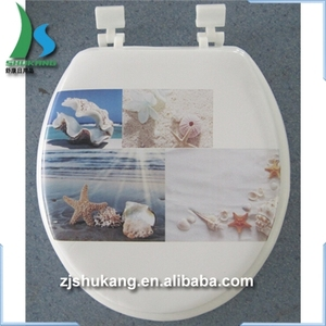 Awe Inspiring Kohler Toilet Seat Kohler Toilet Seat Suppliers And Bralicious Painted Fabric Chair Ideas Braliciousco