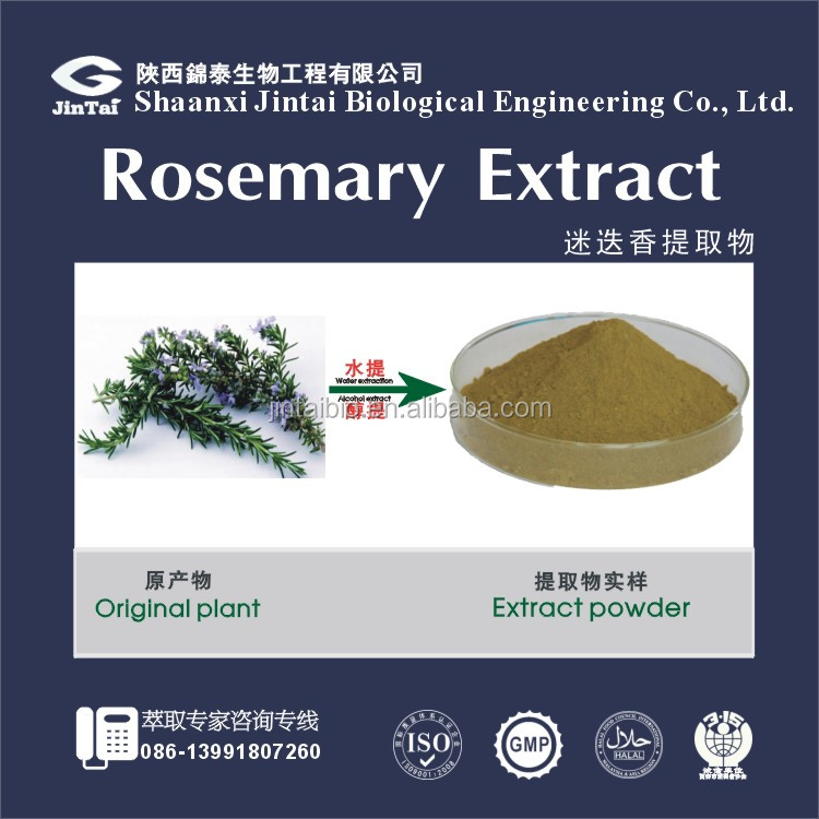 100% pure natural rosemary herb extract