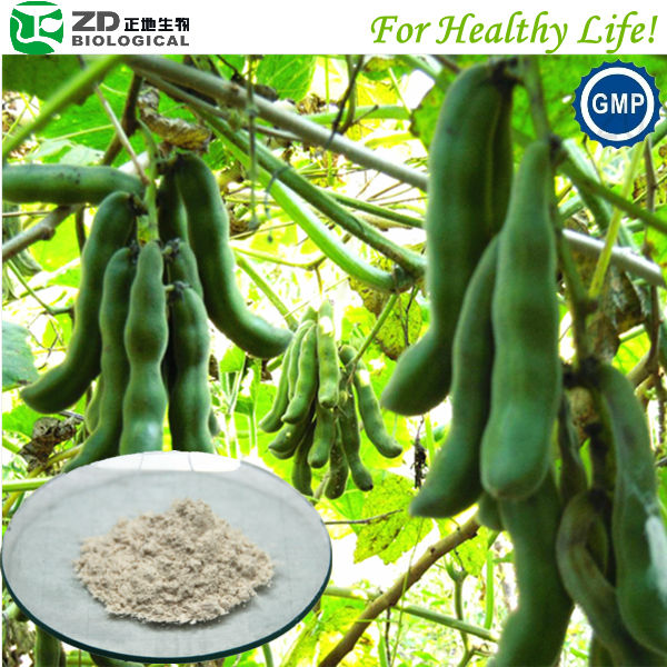USP standard Levodopa from Mucuna Prurien seed by awarded new extraction tech Mucuna Pruriens Extract function food ingredients