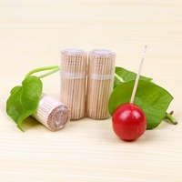 bottle toothpick wholesale tooth pick toothpick manufacturer/wooden toothpick