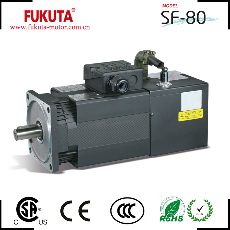 cheap price ac servo spindle motor with TUV CE certification for Egypt