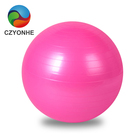 65cm Gym Balls Exercise Balls for Balance Training,Gym,Core Strength,Birthing,Stretching,Office Chair